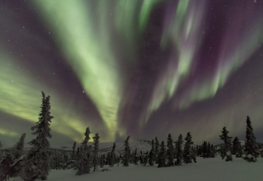 Fairbanks, AK. northern lights