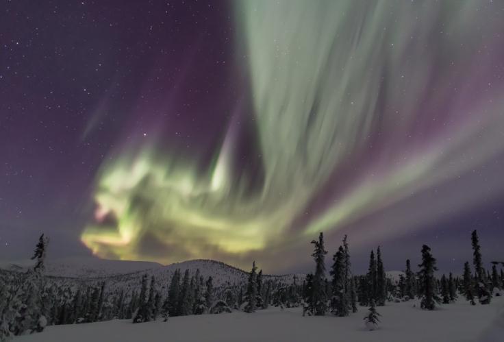 Fairbanks, AK. northern lights